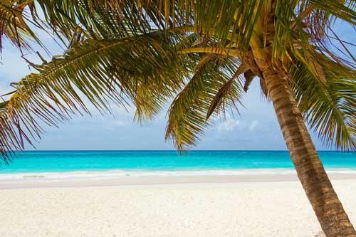 Een zeiljacht huren voor flottieljezeilen in de Caribbean